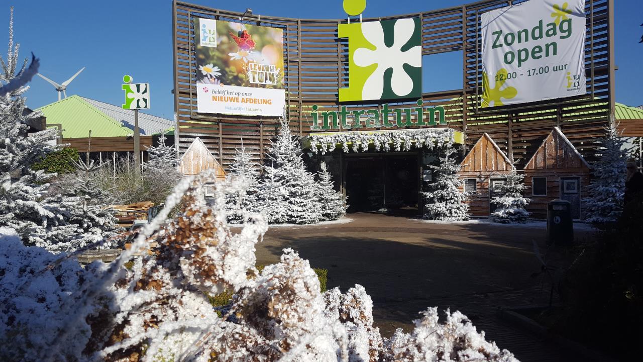 Garden Center Snowy