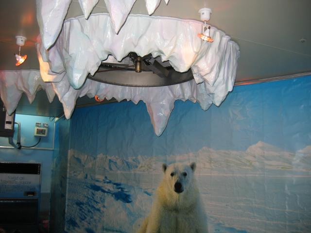 polar bear snowmagic