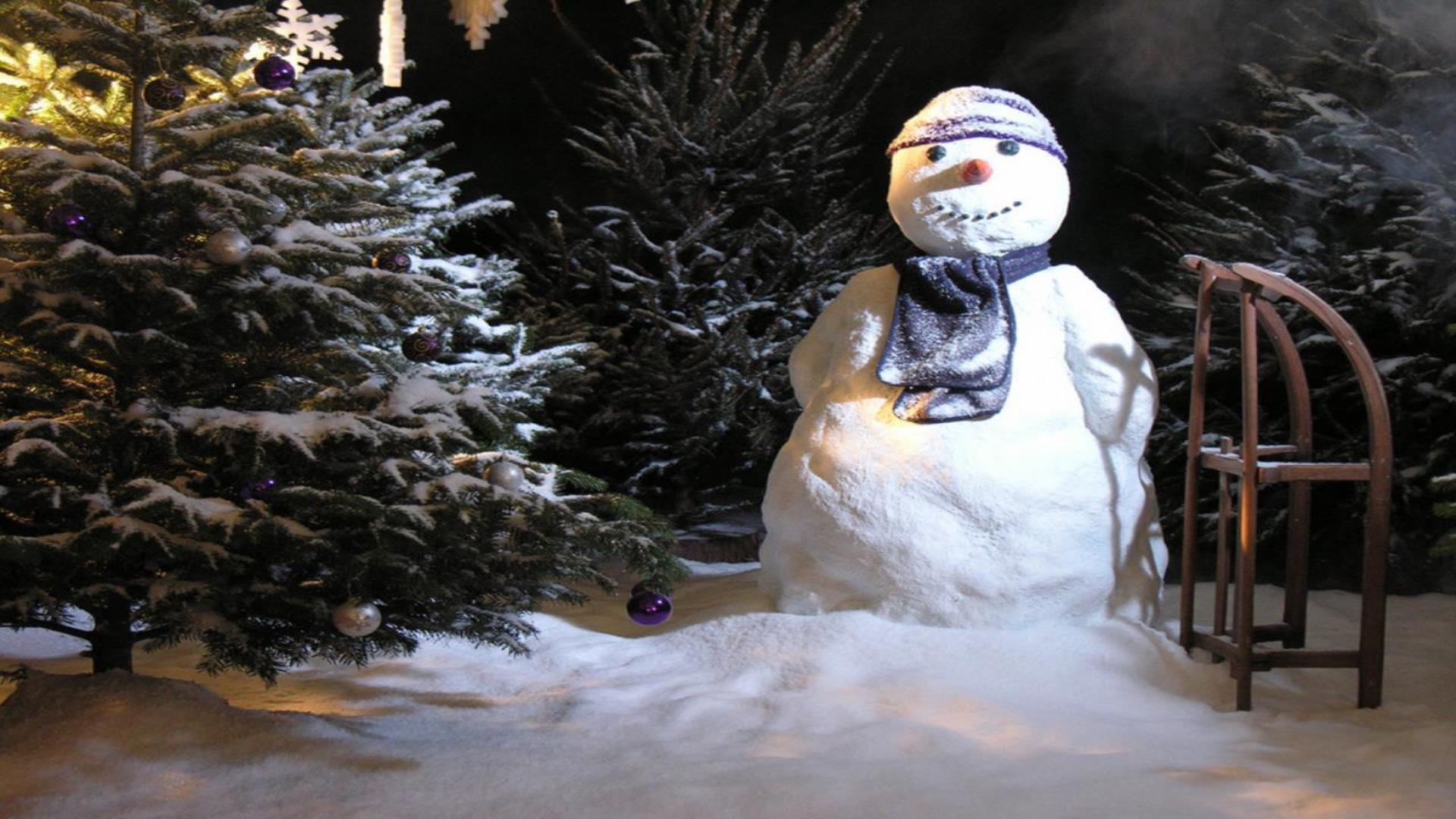 Nep Sneeuwpop
