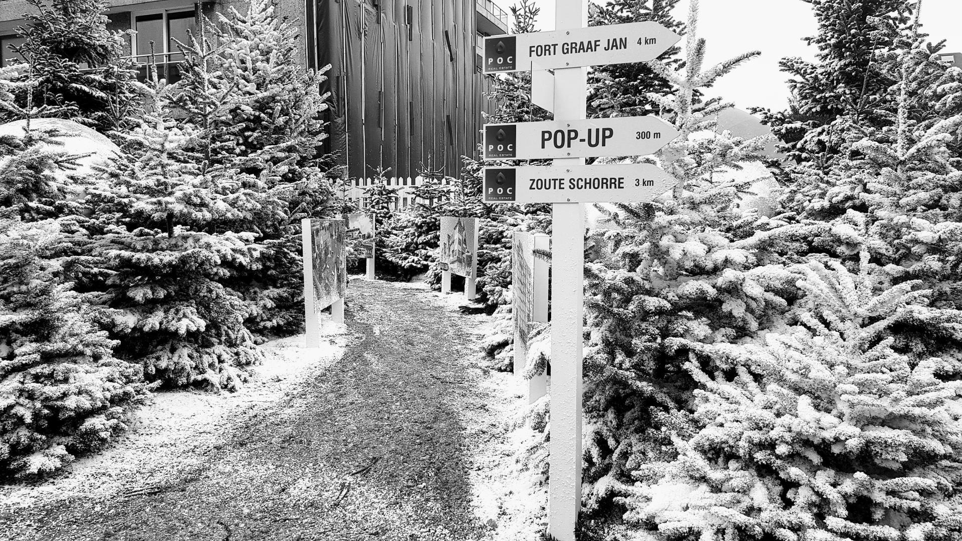 Papier sneeuw op kerstbomen